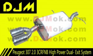 DJM Peugeot 307 2.0 3CRFNB High Power Dual Exit System